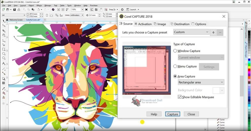 CorelDRAW-Graphics-Suite Serial Key-Free Download 2020